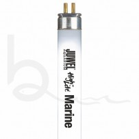 High-Lite T5 Lighting Tube - 438mm 24w - Marine