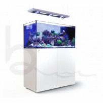 Red Sea Peninsula P500 Deluxe Complete System (White)
