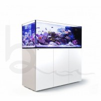 Red Sea Peninsula P650 Deluxe Complete System (White)