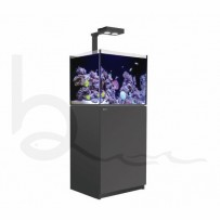 Red Sea Reefer 170 Deluxe Aquarium (Black) | Burscough Aquatics